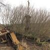 Železná pěst byrokracie, nebo-li s železným křížkem po funuse