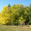 DH 5 Radouč – dřevěné dětské hřiště I