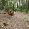 DH 3 Radouč - dřevěné hřiště v lesíku