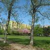 PARKY 6 Nový park