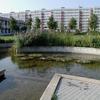 """VODA 2 Park Modrá hvězda - """"rybníček"""""""