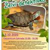 Želví detektivka v Zahradě