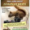 Fotografická soutěž pro veřejnost Zvířata ve městě