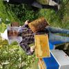 Mladí včelaři v městské včelnici