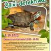 Pozvánka na naše akce v září a říjnu