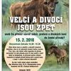 VELCÍ A DIVOCÍ JSOU ZPĚT aneb Co přinesl návrat zubrů, praturů a divokých koní do české přírody
