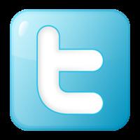 Twitter- ikona www.twitter.com