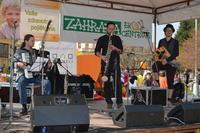 Zeměfest 2012: 4 hodiny hudby (L´Arrache-Coeur)