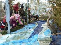 Rok v přírodě - volavky loví u Jizery