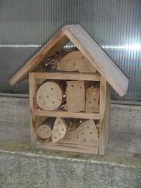 Zabydlený hmyzí hotel